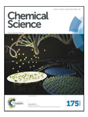 Effects of reagent rotation on interferences in the product angular distributions of chemical reactions